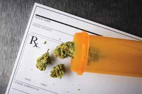 medical-marjuana